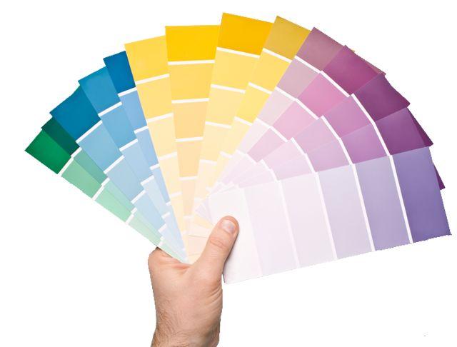 Los colores de tu marca que dicen
